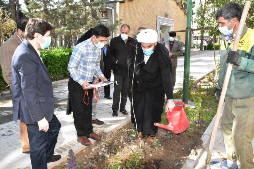 نهال كاری معاون دفتر نهاد در واحد تهران در روز درختكاري
